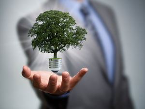 Creating a Greener, More Efficient Workplace | DBS San Diego